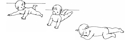 The Development of Movement - Stages By Dr Emmi Pikler